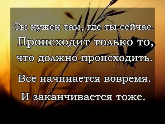 https://pp.vk.me/c627118/v627118197/33e3d/xHiYFpGaG8k.jpg