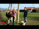 Udderly Amazing: Girl Teaches Cow to Jump