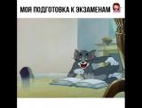 Как я готовлюсь к экзаменам)