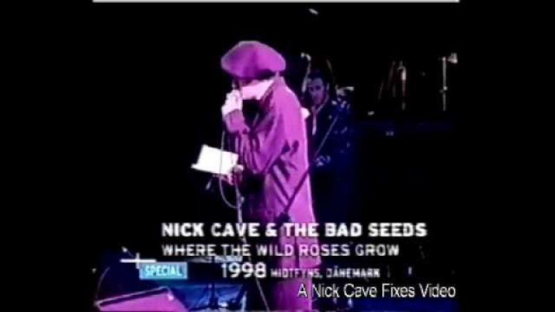 Nick Cave Blixa Bargeld - Where the Wild Roses Grow (Live 1998)