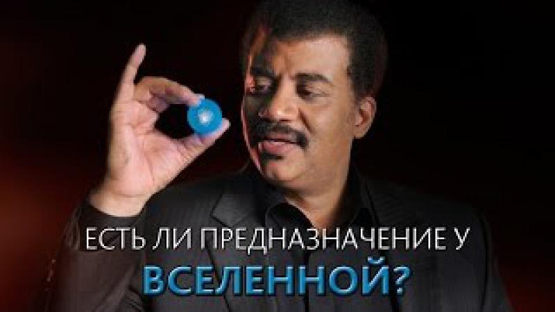 Есть ли предназначение у Вселенной? Нил Деграсс Тайсон [MinutePhysics]