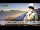 Шейх Мухаммад аль-Яраги l Наставник имамов. imanislamsunna