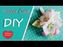 Цвет Яблони Мастер Класс / How to make: Apple Blossom from the Tape / DIY. hand made