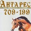 "Конно-спортивный клуб "" Антарес"" г.Вологда"