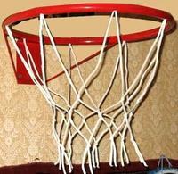 Корзина баскетбольная с сеткой, Максимов