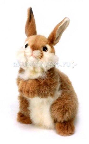 Мягкие игрушки Кролик 30 см, Hansa