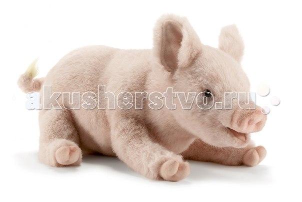 Мягкие игрушки Свинка 28 см, Hansa