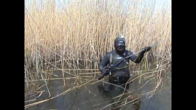 Охота в засаде, А.Кочубей. Подводные ружья Каюк