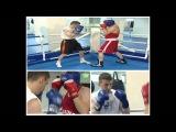 Урок бокса №5 от Александра Колесникова