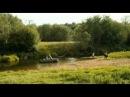 Огуречная любовь 1 из 4 2012, Комедия,