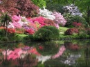 Самые красивые сады в мире.Безумная красота!