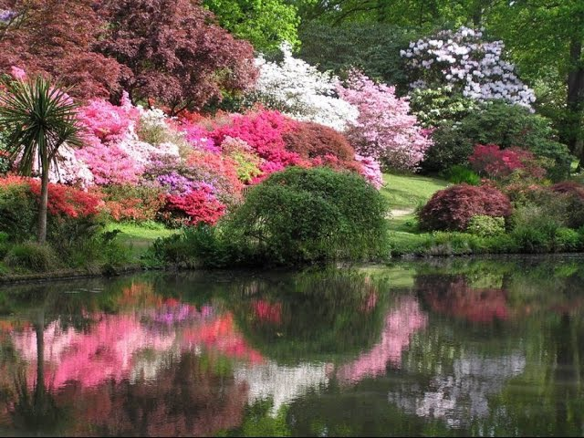 Самые красивые сады в мире Безумная красота
