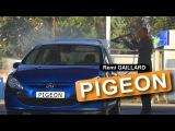 PIGEON (REMI GAILLARD)