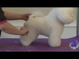 Lindsey Dicken: Bichon in Show Style Trim: FREE HOW TO GROOM Lesson