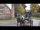 Training a spotted pony to carriage drive - Zeb