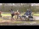 TISCHER Marie GER CAI2 Ermelo NED 2016 Horse Single Marathon Ob 4