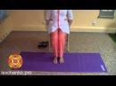 Венозное кровообращение Подтянуть вены на ногах