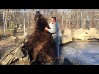Jim playing with jimbo the bear