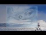 Иванцовы - Вьюга -ты моя подруга текст MP3 песни