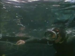 Подводная одиссея _ Жак-Ив Кусто _ 211972 Голоса дельфинов