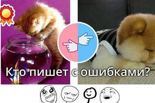 новости омск 12 канал
