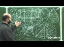 Алексей Холопов. 5. Человек и системная среда