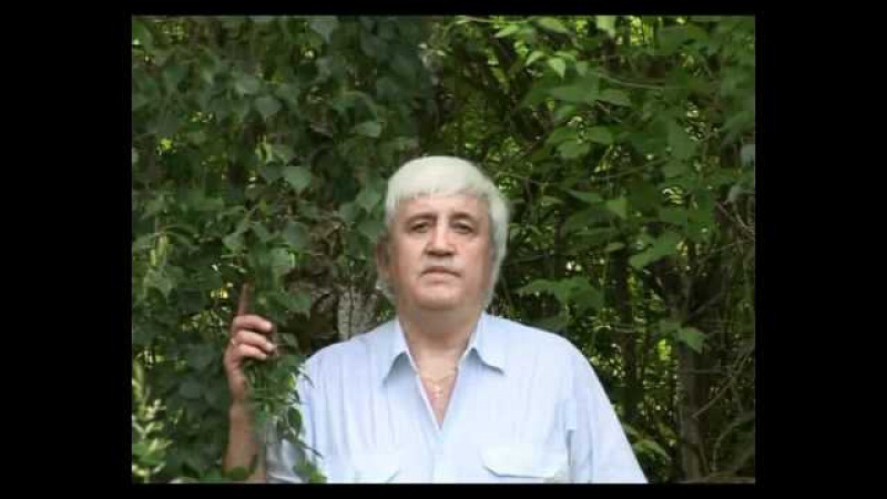 Виктор Давидзон. Баллада о матери.