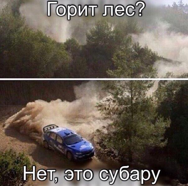 Родион Хавкин | Белгород