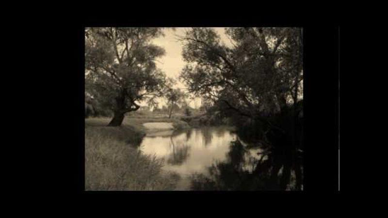 В темном лесе. Русский хор под упр. А.В.Свешникова