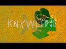 Knxwledge - Flyinglizrds