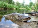 Рыбалка на щуку, щука на спиннинг, ловля весной на реке спиннинг, фидер, джерк, воблер
