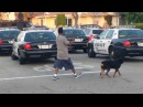 Police Shoot Dog In Front of Owner in Hawthorne, California