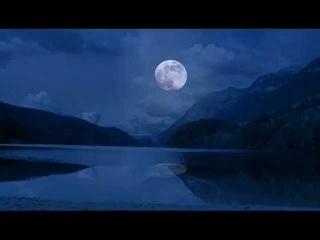 Wolf Lake Trailer
