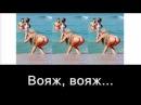 Desireless Voyage Voyage караоке по русски подпеваем