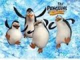 Pingwiny z Madagaskaru CAŁY ODCINEK po polsku