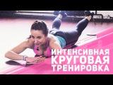 Приходим в форму: мышцы пресса и спины