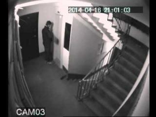 Хулиган в подъезде. Видео с камеры наблюдения