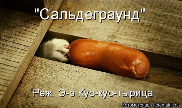 http://cs627124.vk.me/v627124345/53192/a5McgfHlbyQ.jpg