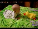 Малыш танцует с уткой))прикол