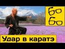 Удар в каратэ и укрепление кулака с Николаем Алексеевым тренировка прямого удара рукой в каратэ