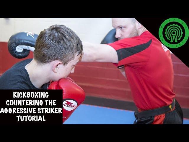 Kickboxing Countering the Aggressive Striker Tutorial