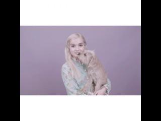 "that Poppy on Instagram: ""This is a Dog YouTube.com/Poppy"""