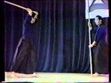 Tenshin Shoden Katori Shinto Ryu Naginata