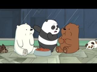 Вся правда о медведях: Сезон 1.Серия 22