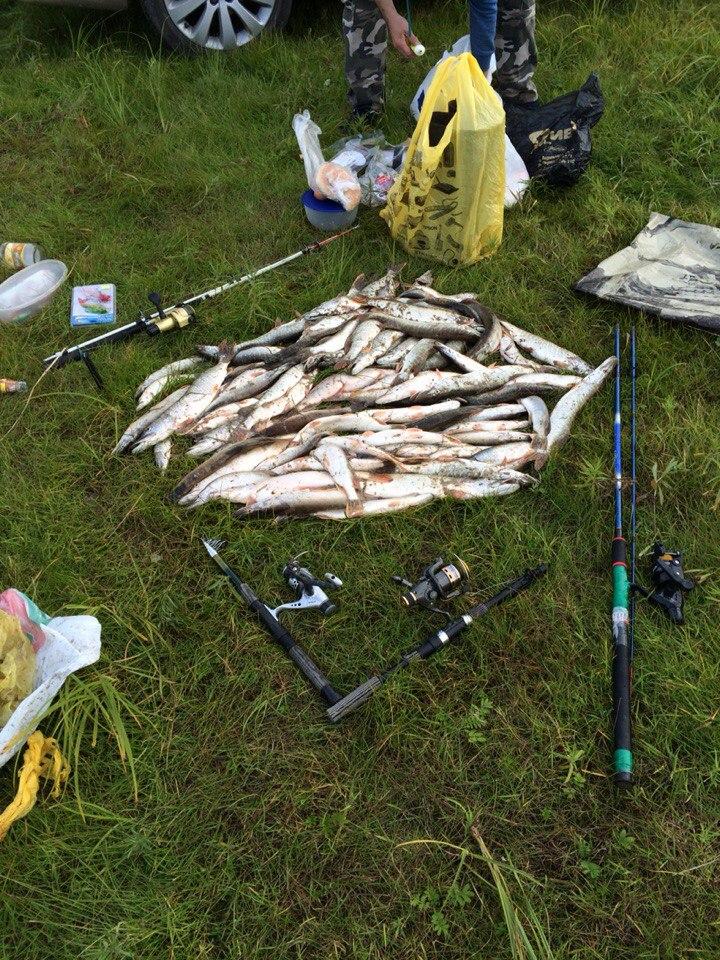 Разрушенные места для рыбалки в тюмени