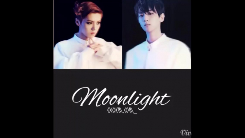 LuBaek | Moonlight