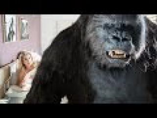 """Фильм """"Новейший завет"""" Смотреть онлайн в хорошем качестве 2015"""