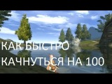 КАК БЫСТРО КАЧАТЬСЯ НА 100+ в Perfect World