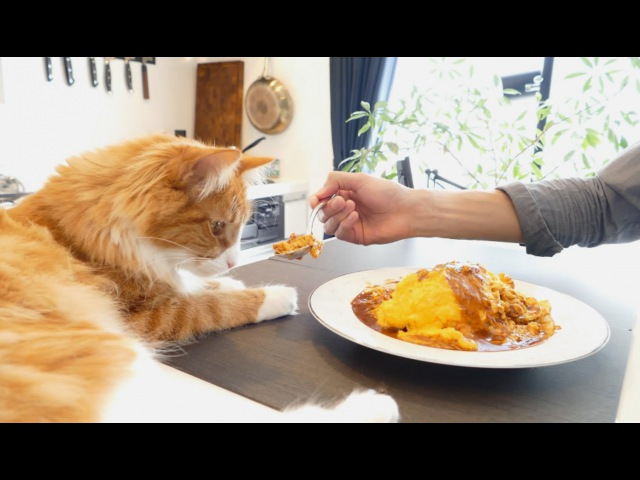 Fluffy Omurice Японский омлет с рисом Омурайсу