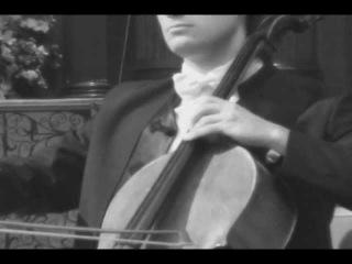 Stjepan Hauser - The Swan
